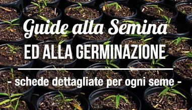 Vendita online semi e giardinaggio