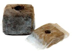 cubetti-di-cocco-semina