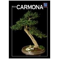 guida-bonsai-carmona