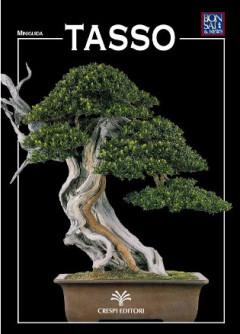 guida-bonsai-tasso