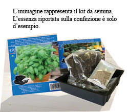 kit miniserra semina (1)