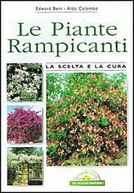 le-piante-rampicanti