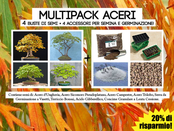 multi-pack-aceri