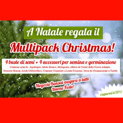 multi pack christmas