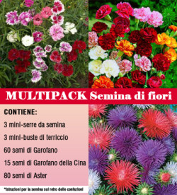 multipack-fiori