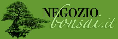 Vendita semi da tutto il mondo e accessori per bonsaisti